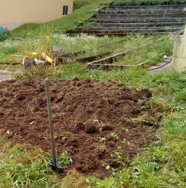 Journée jardinage aux Cadolles